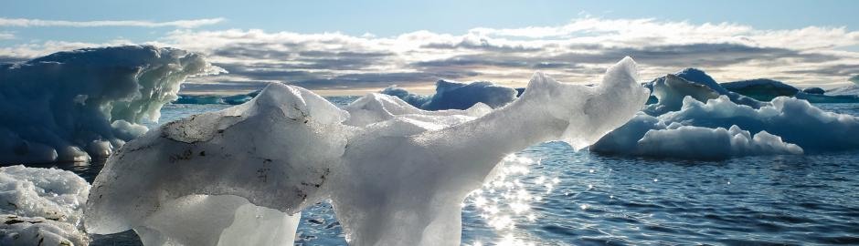 ellesmere ice