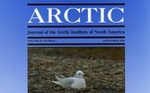 Arctic Cover